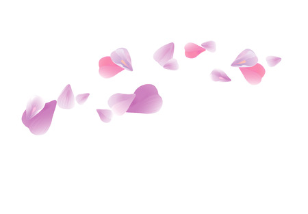 Abstract background with flying pink, purple rose petals. Vector illustration isolated on white background. EPS 10 cmyk Illustration