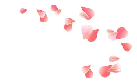 Petals design. Flower background. Petals Roses Flowers. Pink sakura flying petals isolated on white background. Vector EPS 10, cmyk