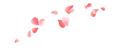 Flowers design. Flowers petals. Sakura flying petals isolated on white background. Petals Roses Flowers. Vector EPS 10 cmyk