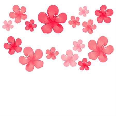 Red pink flowers isolated on white background.