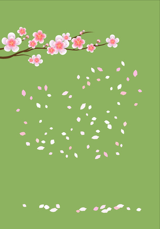 Branch of sakura with Pink flowers. Cherry blossom and flying petals isolated on Green background. Illustration
