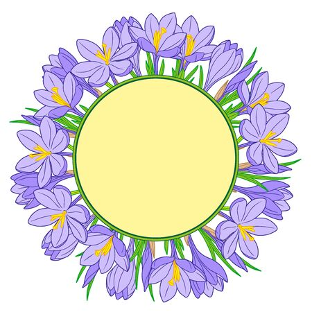 Frame with blue crocus flowers on a white background