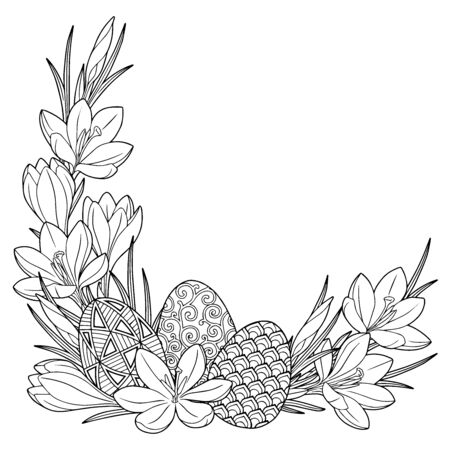 Happy Easter. Frame with black and white doodle easter eggs and spring crocus flowers. Coloring book for adults for relaxation and meditation. Vector isolated elements