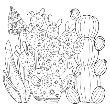 Vector coloring book for adult. Cacti and succulents with spines and flowers. Black and white outline image on a white background Vektorgrafik