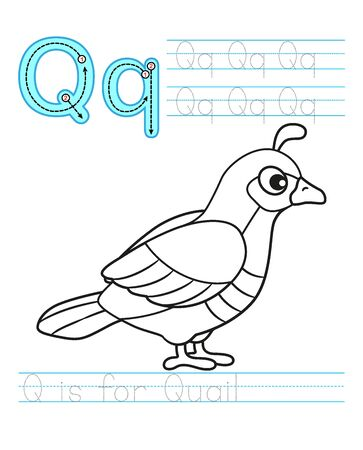 Coloring book page. Printable worksheet for kindergarten and preschool. Exercises for study English. Coloring book alphabet. Simple level of difficulty. Letter q