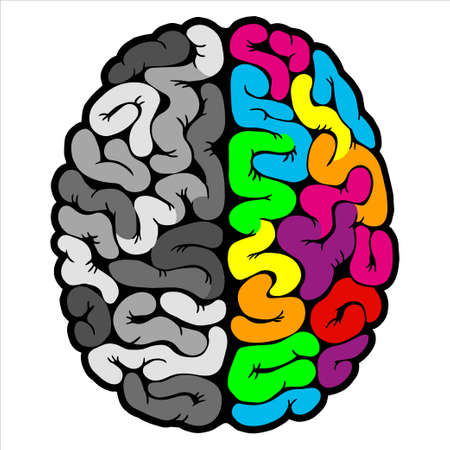 Concept of the thinking process. Creative left brain and logical rightbrain. Idea concept background. Vector illustration