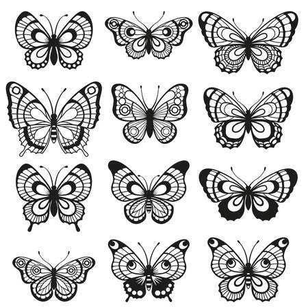 Vector silhouette elegant butterfly isolated on white background. Set of Easy laser cut file for wedding design, birthday card decor and scrapbooking