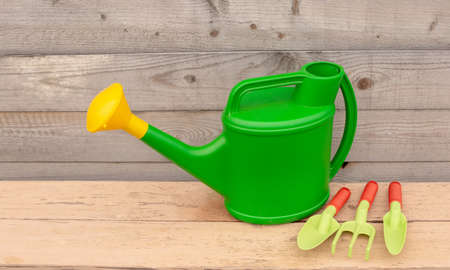Set green garden tools and watering can stand on wooden background