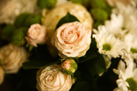 delicate floral arrangement in a bouquet, white chrysanthemums, pink roses and green decor. The concept of floral background wallpaper. Soft blurred background Stock Photo
