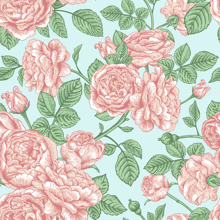 Vector seamless vintage pattern with English roses. Vector