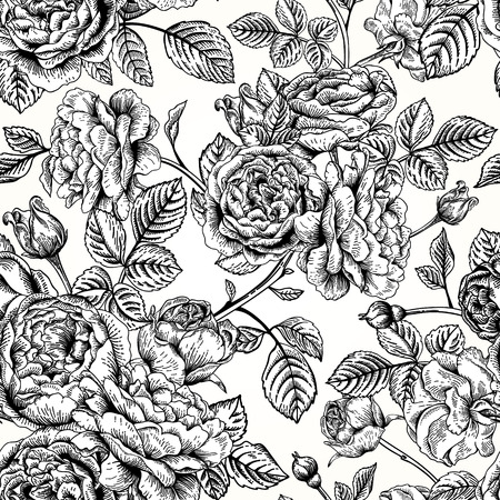 flowers on white: Vector seamless vintage pattern with English roses. Black and white illustration.