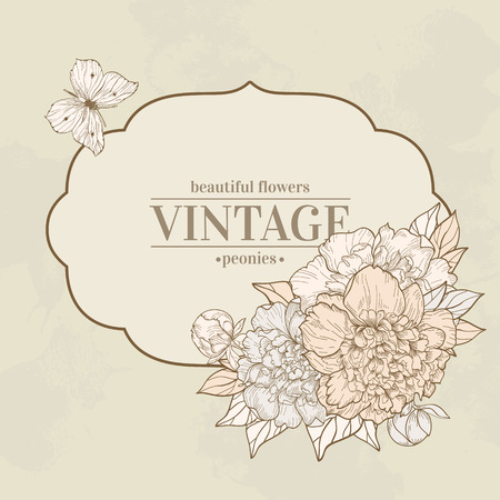 peonies: Vector vintage background with peony and butterfly. Use for invitations, greeting cards.