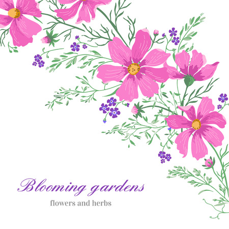herbage: Greeting card with beautiful cute flowers on a white background. Vector illustration.