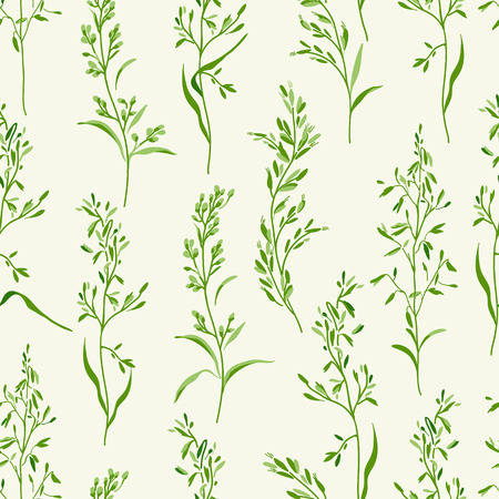 backcloth: Vector seamless floral pattern with herbs on a white background. Illustration
