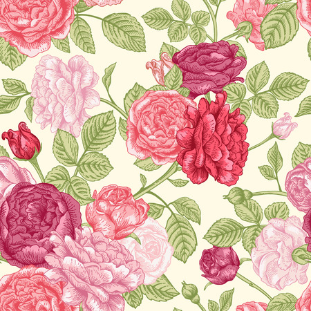 english rose: Vector seamless vintage pattern with English roses.