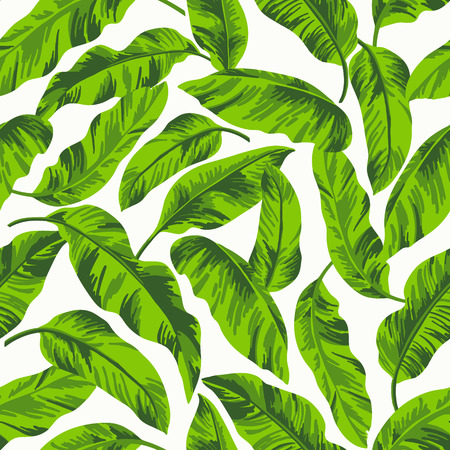 banana leaves: Seamless exotic pattern with tropical leaves on a white background