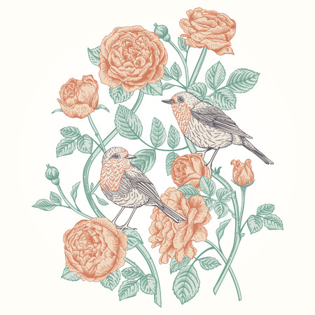 vintage card with roses and birds. Vector
