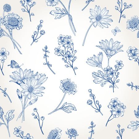 aster flowers: Beautiful vintage seamless pattern with blue flowers on a white background