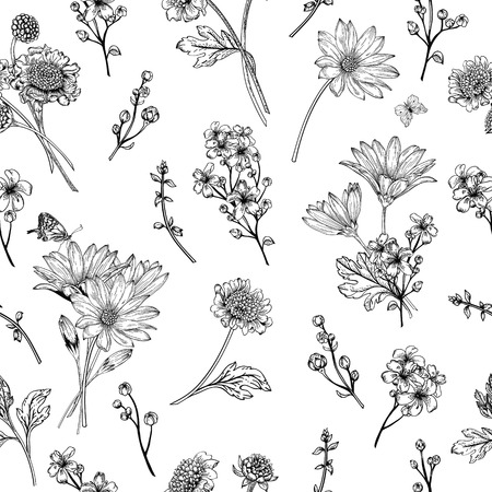 papillon dessin: Belle seamless vintage avec des fleurs sur un fond blanc