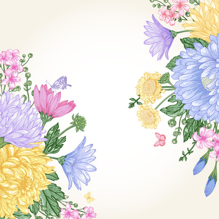 aster: Vector summer background with bouquets of flowers in vintage style. Aster, daisy, chrysanthemum.