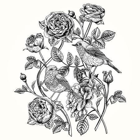 dessin noir et blanc: carte vintage avec des roses et des oiseaux. Illustration