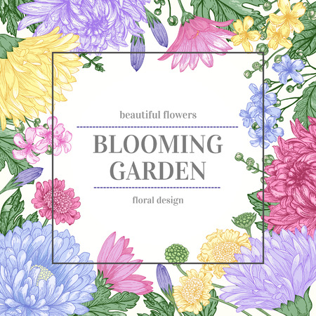 Colorful flowers on a white background. Illustration