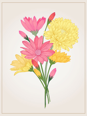 aster: floral bouquet with daisy, aster and in vintage style. Illustration