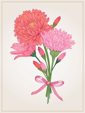 aster flower: floral bouquet with daisy, aster and in vintage style. Illustration