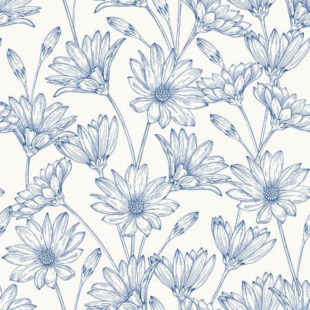 dibujos lineales: Modelo inconsútil de la vendimia hermosa con margaritas azules sobre un fondo blanco.