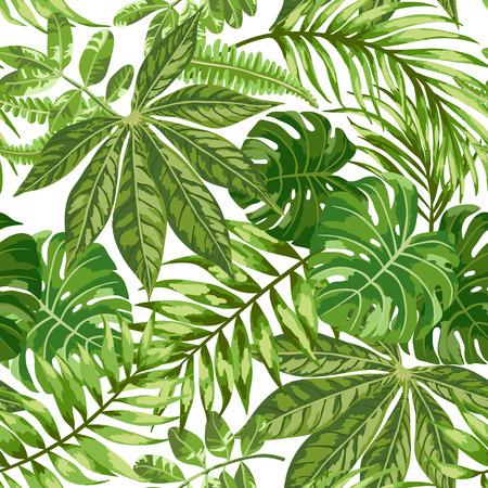 jungla: Modelo inconsútil exótico con hojas tropicales sobre un fondo blanco. Ilustración del vector.