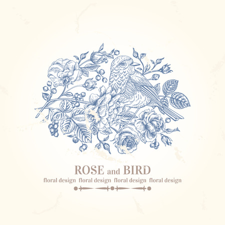 blue flower: Vector vintage wedding card with bird, roses and berries.
