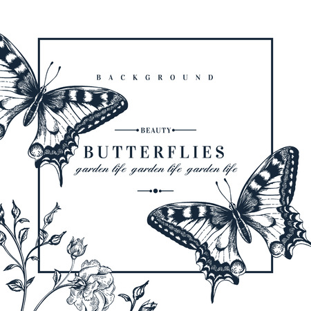black butterfly: Vector card with butterflies and flowers.