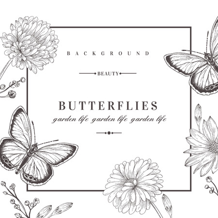 flower borders: Summer background with flowers and butterflies. Vector illustration. Black and white. Acidanthera flowers.