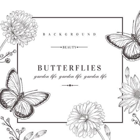 Verano de fondo con flores y mariposas. Ilustración del vector. Blanco y negro. Flores Acidanthera.