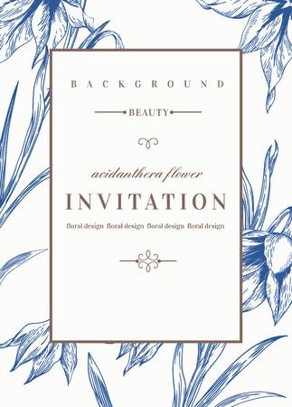 tarjeta de invitacion: Plantilla de invitación de boda con las flores. Flores Acidanthera en azul. Ilustración del vector.