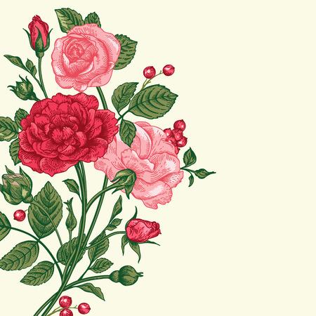 cartoline vittoriane: Vettore Vintage sfondo con un mazzo di rose.