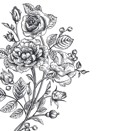 Vintage vector achtergrond met een boeket rozen. Stock Illustratie