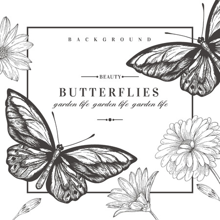 Vector card with butterflies and flowers. Black and white illustration.