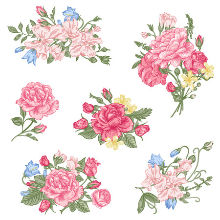 garden peas: Set of vector floral design elements. A collection of romantic bouquets with garden roses, sweet peas and bell in pastel colors on a white background. Illustration