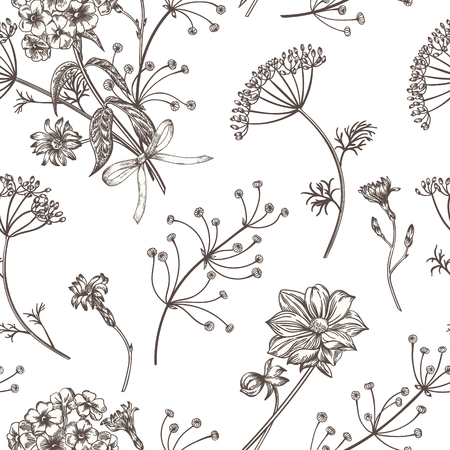 medicate: Seamless vintage pattern with herbs, flowers and plants. Herbal background.