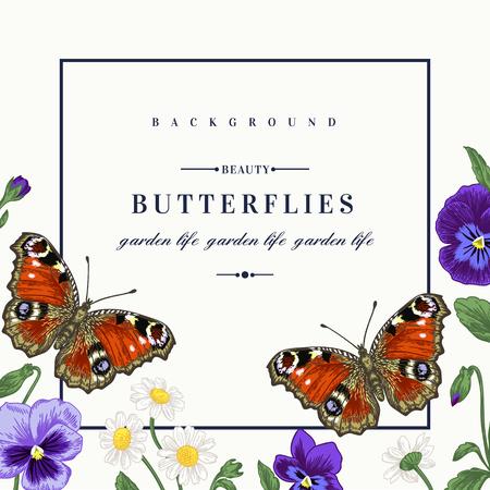 Vector frame avec des fleurs d'été et un papillon dans le style vintage. Pansies, marguerites, violet. Vecteurs