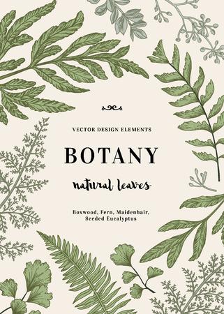 Floral background. Vintage invitation with various leaves. Botanical illustration. Fern, seeded eucalyptus, maidenhair. Engraving style. Design elements.