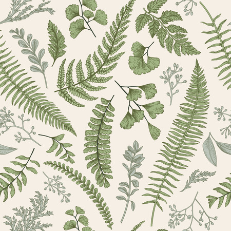 fern leaf: Seamless floral pattern in vintage style. Leaves and herbs. Botanical illustration. Boxwood, seeded eucalyptus, fern, maidenhair.