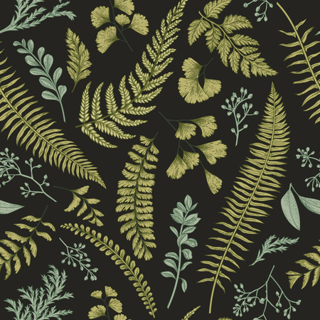 boxwood: Seamless floral pattern in vintage style. Leaves and herbs. Botanical illustration. Boxwood, seeded eucalyptus, fern, maidenhair.