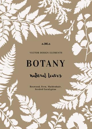Botanische illustratie met bladeren. Buxus, gezaaid eucalyptus, varen, maidenhair. Design elementen. Stock Illustratie