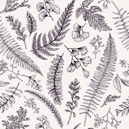 eucalyptus: Seamless floral pattern in vintage style. Leaves and herbs. Botanical illustration. Boxwood, seeded eucalyptus, fern, maidenhair.