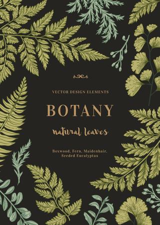 Botanical illustration with leaves on a black background. Boxwood, seeded eucalyptus, fern, maidenhair. Engraving style. Design elements. Illustration