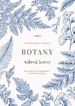 青の葉を持つ植物の図。つげ、シード ユーカリ、シダ、イチョウ。彫刻スタイル。デザイン要素です。黒と白。