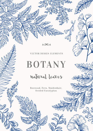 Botanical illustration with leaves in blue. Boxwood, seeded eucalyptus, fern, maidenhair. Engraving style. Design elements. Black and white.