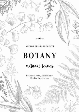 花の背景。様々 な葉を持つヴィンテージの招待状。植物のイラスト。シダ、シード ユーカリ イチョウ。彫刻スタイル。デザイン要素です。